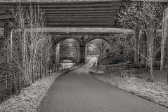 74/365 Three Bridges
