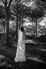 St (nicolamarongiu) Tags: biancoenero blackandwhite monocromo softhorror story bosco piante alberi donna altezza capelli surrealism surrealismo dark woman