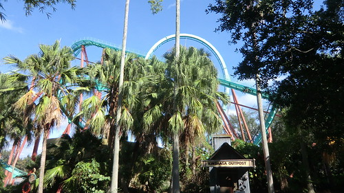 Florida - Tampa:  Busch Gardens Theme Park - Kumba roller coaster (in the back)