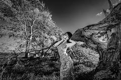 Chaos of Silver (HarQ Photography) Tags: monochrome blackandwhite fujifilm fujifilmxseries xt3 xf1024mmf4rois model portrait conceptual tree nature