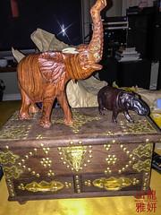 2018 - Venturers Tanzania - Day 15 (28th Vancouver Scout Group) Tags: 28thkitsilanoscoutgroup 28thvancouverscoutgroup africanelephant africanbushelephant commonhippopotamus hippo hippopotamusamphibius loxodontaafricana safari scouts scoutscanada tanzania tanzaniaexpedition2018 venturerscouts venturers zanizbarchest carving elephant mammal memories souvenirs burnaby britishcolumbia canada ca
