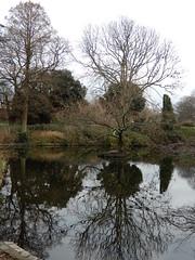 Brockwell Park, Christmas Day 2018 (John Steedman) Tags: london uk unitedkingdom england イングランド 英格兰 greatbritain grandebretagne grossbritannien 大不列顛島 グレートブリテン島 英國 イギリス ロンドン 伦敦 brockwellpark
