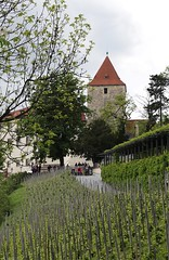 IMG_3969 (chazheng) Tags: praguecastle czech europe city canon culture history art centuries traditions architects landscape famous wonderful interesting perspective flickr attraction building fullframe street