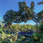 Pandora - Stitched Vertical Panorma thumbnail