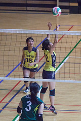 20180512_IMG_7304 (ko_en_volleyball_para) Tags: スポーツ sports バレーボール volleyball パラ para 聴覚障害 deaf the 18th national disabled competition hearing impaired area preliminary 2018 第18回 全国障害者スポーツ大会聴覚障害者バレーボール競技 地区予選大会 大田区体育館 otacity general gymnasium 栃木 tochigi 東京 tokyo