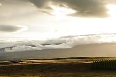 *** (slava eremin) Tags: nz newzealand alexandra otago landscape clouds hills sunset