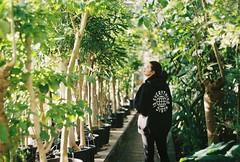 CNV000024 (skorska.a) Tags: copenhagen kbh analog analogphotography 35mm 35mmfilm zenit zenite botaniskhave