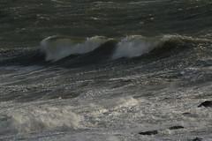 IMG_4546 (monika.carrie) Tags: monikacarrie scotland aberdeen waves northsea stormy