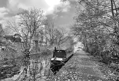 Aylesbury Arm (R~P~M) Tags: canal waterway grandunion aylesburyarm aylesbury bucks buckinghamshire boat narrowboat england uk unitedkingdom greatbritain