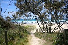 making an entry (monkeyc.net) Tags: salt5 kingscliffe nsw australia beach beachside stairs sand blackwhite