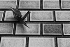 ON THE WALL (Sign-Z) Tags: nikon d5 2470mmf28g papercrane monochrome bw blackwhite wing 折り鶴 モノクローム 白黒