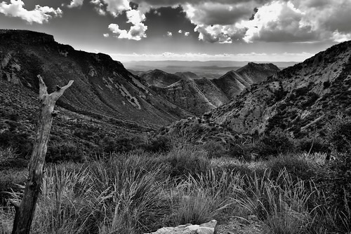 Views Seen Hiking Back to the Chisos Basin (Black & White, Bend National Park)