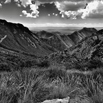 Views Seen Hiking Back to the Chisos Basin (Black & White, Bend National Park) thumbnail