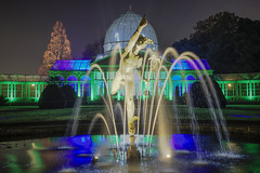 Look up and what do you see? (Syon Park, London, United Kingdom)(Buon Natale!!!/Merry Christmas!!!) (AndreaPucci) Tags: syonpark uk london enchantedwoodland greatconservatory fountain andreapucci