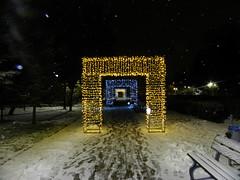 Christmas lights in Bazilescu Park, Bucharest (cod_gabriel) Tags: bucuresti bucurești bucharest bucarest bucareste bukarest boekarest romania roumanie românia bazilescu parc park parculbazilescu bazilescupark winter iarna iarnă night noapte snow zapada zăpadă ninsoare
