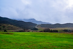 POTD 016-2019 (Webtraverser) Tags: 365picturesin2019 atmosphere boneymountain conejovalley everydayphotographer fog g85 green greenfields lumix micro43 pad2019016 pictureoftheday potd2019 rain santamonicamountains venturacounty westlakevillage california unitedstatesofamerica us