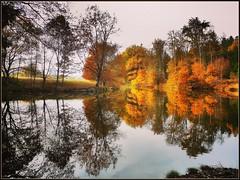 Welzheimer Wald (almresi1) Tags: lake see lago nature landscape landschaft reflections spiegelung tree baum wald forest wood colours bunt herbst autumn fall water