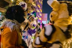 DSC09256 (Kory / Leo Nardo) Tags: pacanthro pawcon paw con pac anthro convention fur furry fursuit suiting mascot sona fursona san jose doubletree hotel california dance party deck animals costuming pupleo 2018