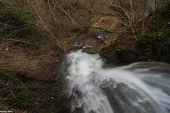 au dessus de la Cascade du Creux Lague - Blégny - Jura (francky25) Tags: au dessus de la cascade du creux lague blégny jura franchecomté hiiver
