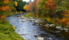 Lost River in N.H. (Stanley Zimny (Thank You for 33 Million views)) Tags: lost river nh fall autumn trees 4 four seasons colors