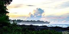 Clouds above the jungle (Thijs de Groot Photography) Tags: clouds jungle fog thijsdegroot thysson costarica hoorn palmtree shore coast beach ocean