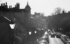 Hampstead lampposts | Autumn in Hampstead-36 (Paul Dykes) Tags: hampstead london uk unitedkingdom gb england autumn lampposts road cars blackandwhite daytime sunlight