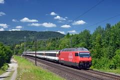 🇨🇭 IR37 2273 @ Rupperswil (Wesley van Drongelen) Tags: sbb cff ffs schweizerische bundesbahnen chemins de fer fédéraux federaux suisses ferrovie federali svizzere swiss federal railways ir interregio 37 ir37 br baureihe rh reihe serie série class type re 44 460 re460 rupperswil lenzburg trein train zug