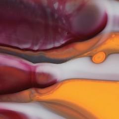 Fusingglas, fused Glass, colored Glass, (www.topcut.ch) Tags: coloredglass fusedglass fusingglas macroshot makro makroaufnahme