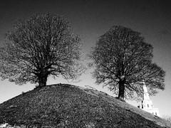 Oxford Castle Mound (cycle.nut66) Tags: blackandwhite monochrome grayscale olympus epl1 evolt micro four thirds mzuiko oxford clear bright winter light sky castle mound bare trees spire motte bailey grainyfilmartfiler grass