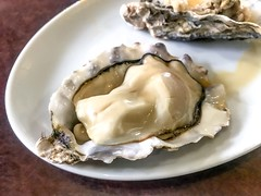 Oysters - Stock image (DigiPub) Tags: 日本 横滨 青香延 海蛎子 牡蛎 海蠣子 福富町 橫濱 海鮮 牡蠣 カキ 1136337256302598358 1136337256 istock 302598358 2019 animalshell appetizer barbecuegrill domesticlife food foodstate freshness gourmet healthyeating homemade horizontal japan luxury marchmonth mollusk nopeople open oyster partof partofaseries photography readytoeat seafood table takenonmobiledevice yokohama 橫浜 よこはま