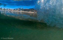 Underwater. A view from behind the wave while underwater. (davidweedallphotography) Tags: oceanphotography ocean seascape behind natgeo natgeoyourshot nationalgeographic surf fantasticnature beach thebeach lagunabeach earthphotography earth naturephotography nature photographer photography beauty gopro california underwater waterphotography water wavephotography waves