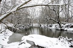 Winter Wonderland (aaron_gould) Tags: winter snow wonderland creek stream river trees ice slush hike trails tranquility morning nature frost ohio landscape january nikon outside water nikkor d7000