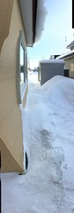 Our Very Own Glacier (sjrankin) Tags: 18january2019 edited snow wind winter cold neighborhood house houses road trees buildings wires lines kitahiroshima hokkaido japan panorama