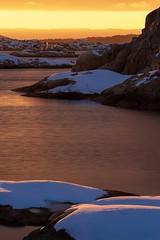 Friheten i naturen. (lmbythesea) Tags: frihet fotosondag fs190203