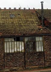 7 - Saint-Vallier (Bourgogne) - Irruption du passé... (melina1965) Tags: 2018 novembre panasonic lumix dmctz57 bourgogne burgondy saôneetloire saintvallier façade façades toit toits roof fenêtre fenêtres window windows