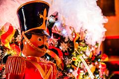 1W2A0105 (clement.kinglam.lo) Tags: casa loma christmas castle toronto night