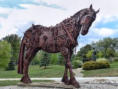 Rusty Horse Sculpture (J Wells S) Tags: ironhorse sculpture rust rusty crusty junk garden campus northcentralmichigancollege petoskey michigan art