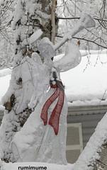 Christmas Weather (rumimume) Tags: potd rumimume 2017 niagara ontario canada photo canon 80d sigma christmas holiday december25 season outdoor decoration day 2018