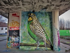 / DOK - 26 dec 2018 (Ferdinand 'Ferre' Feys) Tags: gent ghent gand belgium belgique belgië streetart artdelarue graffitiart graffiti graff urbanart urbanarte arteurbano ferdinandfeys ceepil bestof2018be