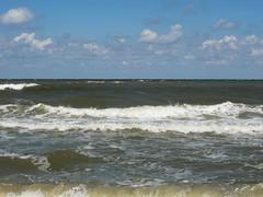 IMG_5785 (Бесплатный фотобанк) Tags: азовское море пляж россия краснодарскийкрай