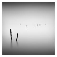 The Fishing Poles (Marco Maljaars) Tags: water seascape poles mood longexposure le blackandwhite bw marcomaljaars markermeer fishing sky waterscape wood minimalism monochrome lines leefilter
