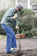 Martha Coleman uses her shovel to do yard work outside her house.