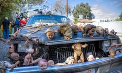 All Dolled Up (Non Paratus) Tags: 41st doodahparade parade 2018 pasadena dolls art crybabybuick car