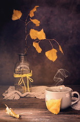 """Días de otoño"" (mariajoseuriospastor) Tags: amarillo hojasdeotoño stilllife autumn otoño"