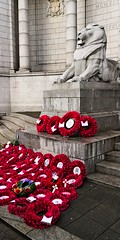 IMG_20181111_114305 (LezFoto) Tags: armisticeday2018 lestweforget 19182018 100years aberdeen scotland unitedkingdom huawei huaweimate10pro mate10pro mobile cellphone cell blala09 huaweiwithleica leicalenses mobilephotography duallens