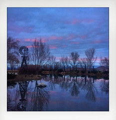 On Windmill Pond (Maureen Medina) Tags: maureenmedina artizenimages landscape sunset pond lake water reflection trees windmill chinovalley az arizona iphone square framed blue hour