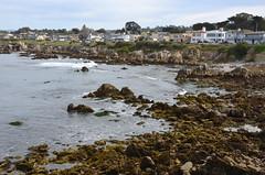 Living along Ocean View Boulevard (afagen) Tags: california pacificgrove montereypeninsula pacificocean ocean