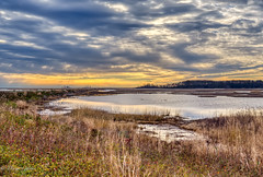View Over Shearness Pool (dngovoni) Tags: background bombayhook delaware fall landscape water