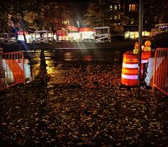 NYC Fall Rain (TesoroNegro) Tags: hamiltonheights nycstreets nycfall nyc