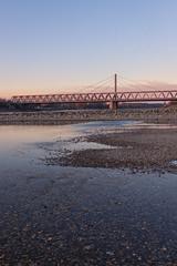 Niedrigwasser am Rhein (Jana`s pics) Tags: wasser fluss rhein pegel water river rhine wasserstand brücke bridge abend evening spaziergang walk outdoor drausen landschaft landscape karlsruhe